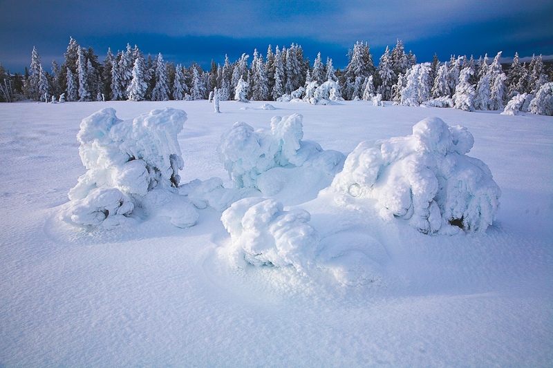 Yellowstone Winter Blanket
