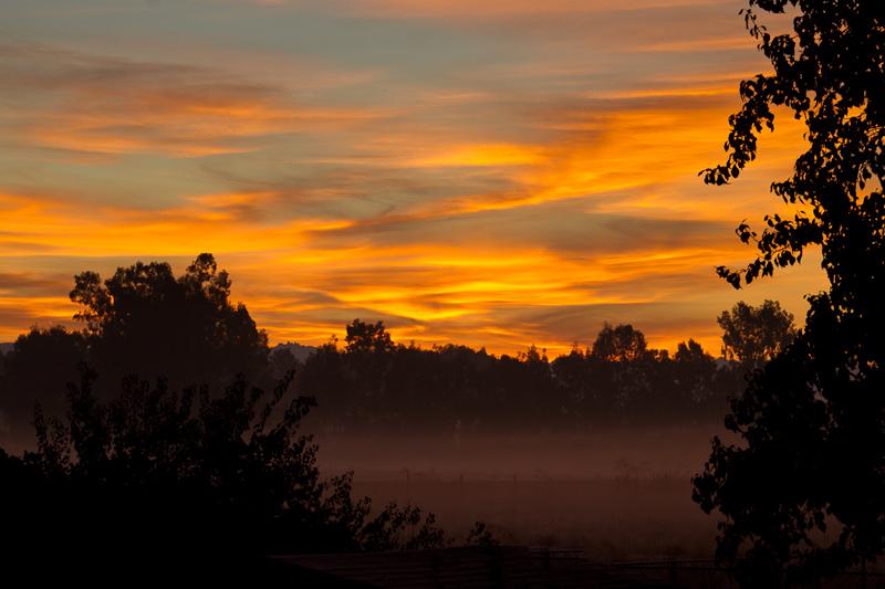 Clovis Sunrise