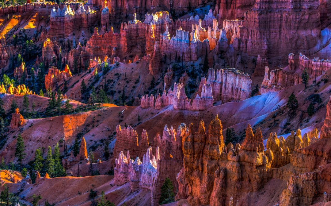 Bryce Canyon Magic