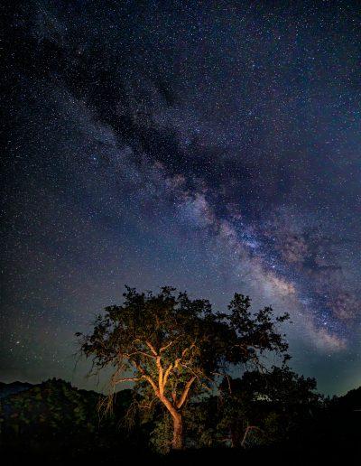 Pine Flat Stars-14